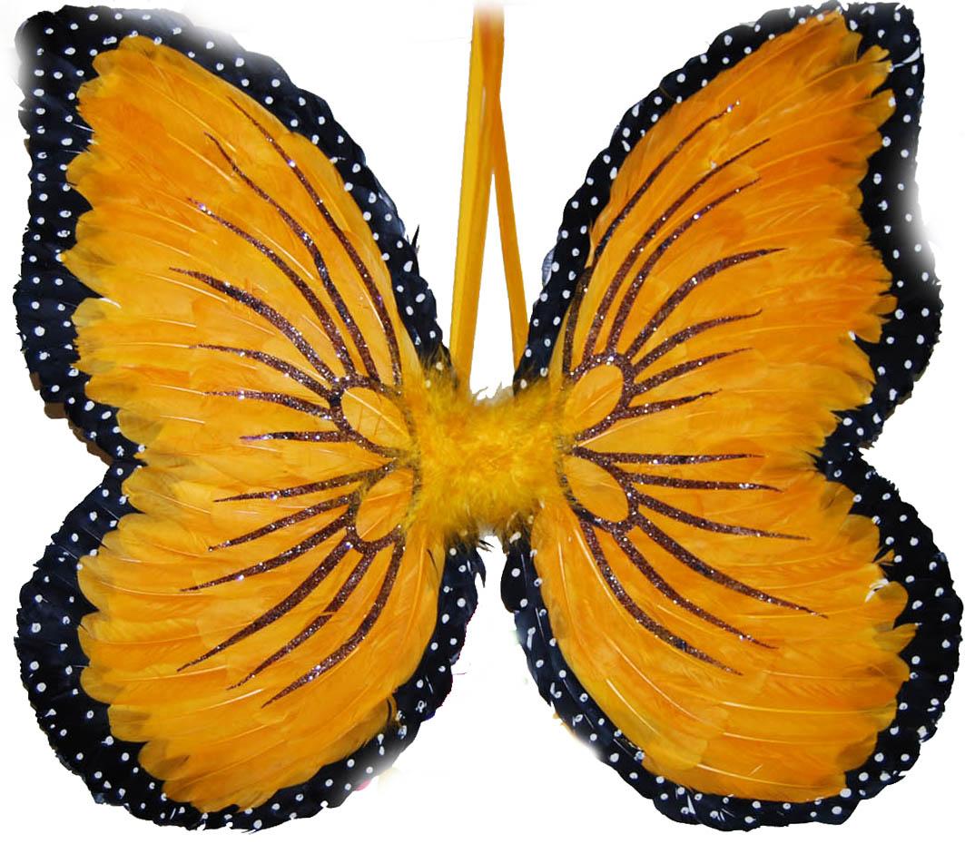 Крылышки бабочки картинки