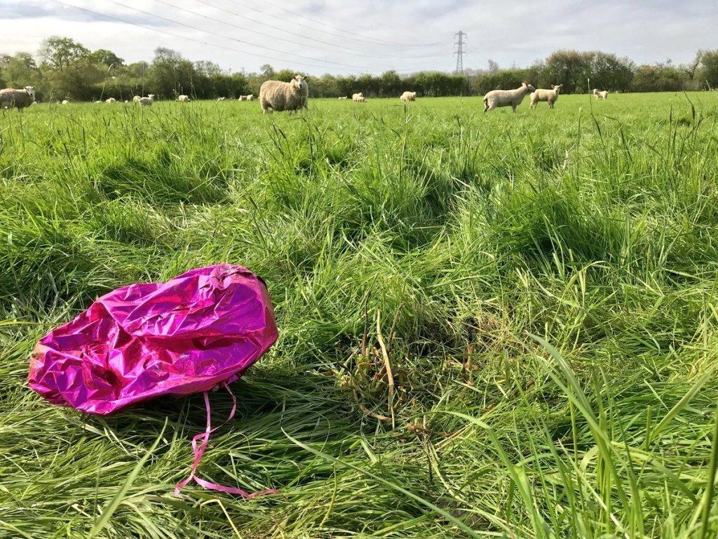 Что такое осознанное использование воздушных шаров? - фото 1 | 4Party