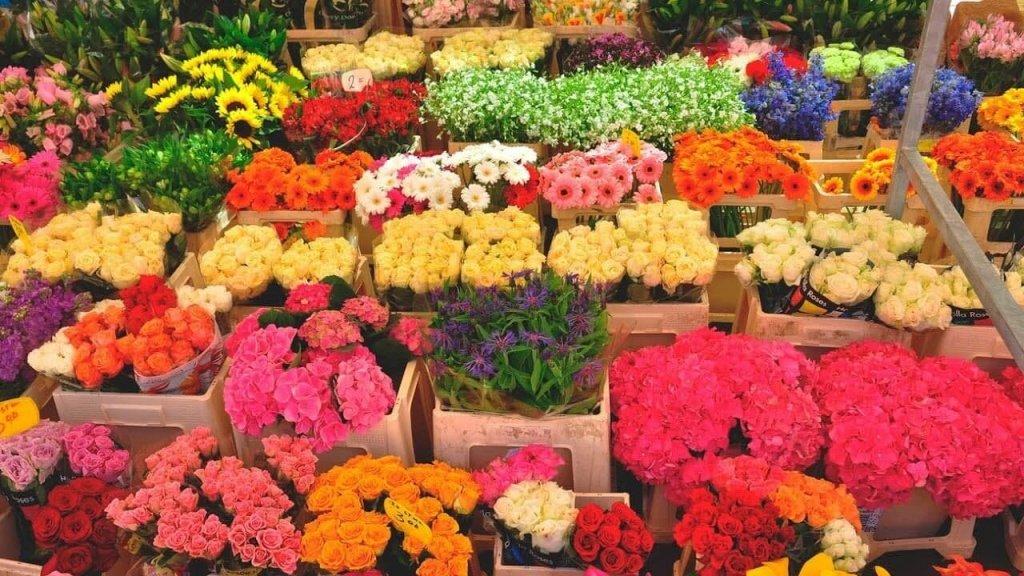 Цветы - без слов о самом сокровенном: какие цветы дарят на 8 марта - фото 3 | 4Party